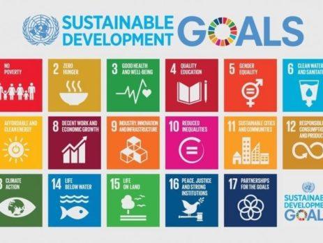 Sustainable development goals