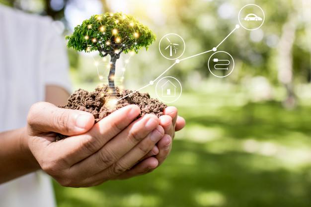 What is regenerative organic agriculture? | TransformationHoldings.com