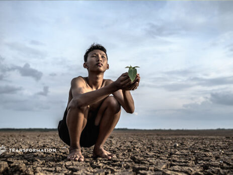 climate change, dirt, a person holding a plant | Transformation Holdings