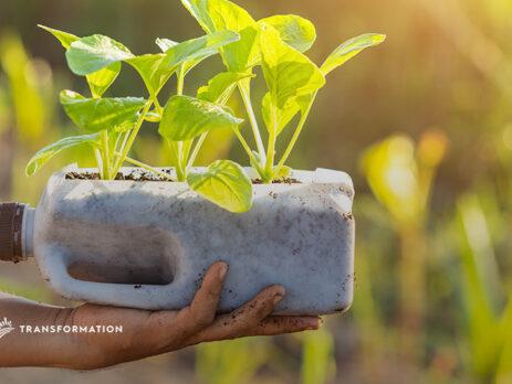 waste management concept, planting vegetables in plastic bottle