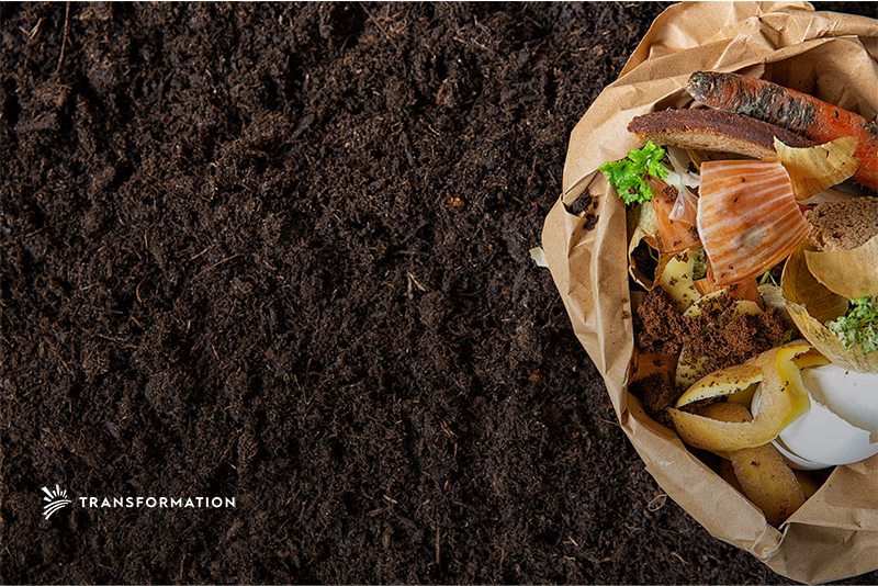 Reducing Food Waste